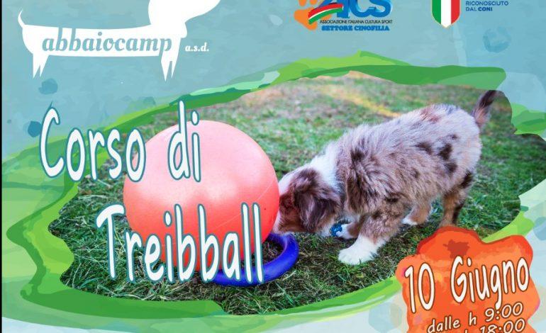 CORSO DI TREIBBALL