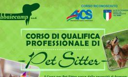 CINOFILIA: CORSO DI PET SITTER a RIMINI